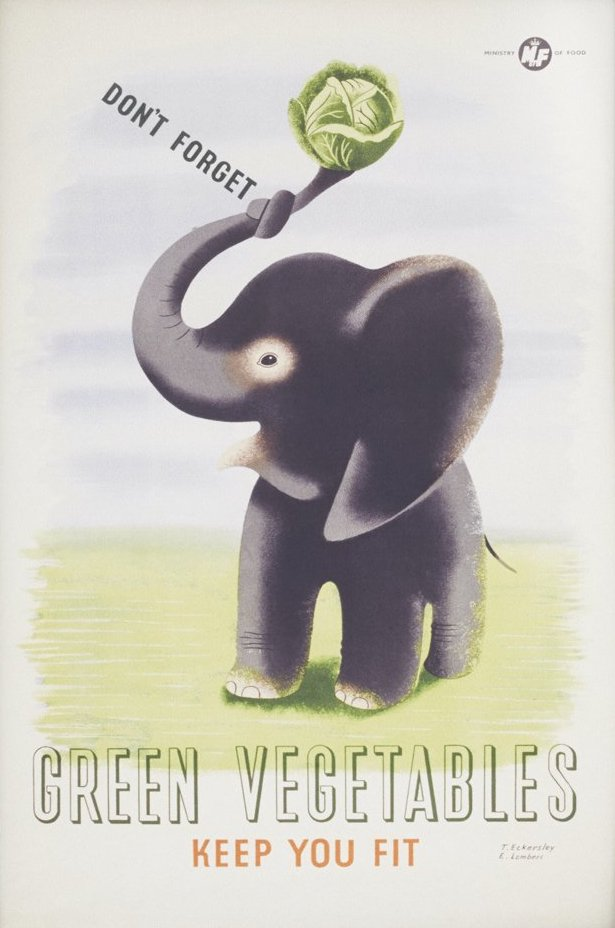 lithographic poster of an elephant holding a cabbage